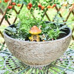 Large Garden Bowl Micro Landscape Succulent Pot Hydroponic Planter Bird Bath