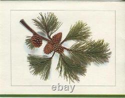 Vintage Garden Flowers Iris Bluebird Bird Bath Poetry Print 1 Pine Tree Card